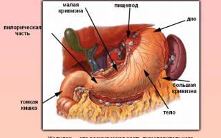 Гипотония желудка