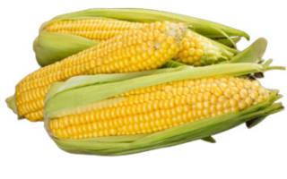 Можно ли кукурузу при запорах