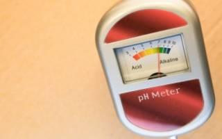 Нормальная кислотность в просвете тела желудка натощак
