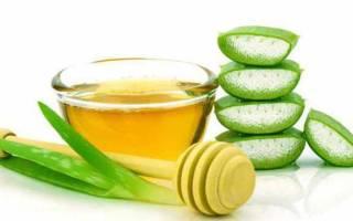 Лечение язвы желудка алоэ с медом